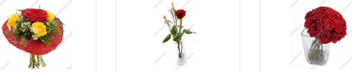 Blumenpapa Gutschein