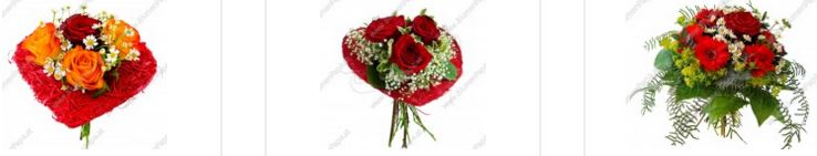 Blumenpapa Rabatt