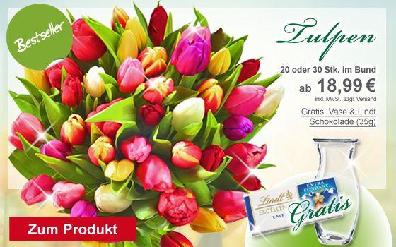 FloraPrima Bestseller - Tulpen ab 18.99